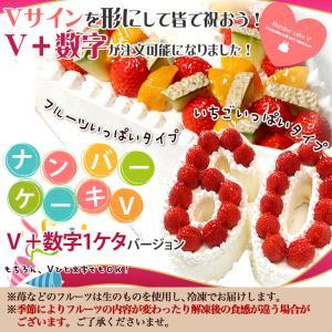 ナンバーケーキ V+数字1ケタ (7号サイズ)フルーツいっぱい/いちごいっぱい/生チョコの3タイプ|cake-tairiku