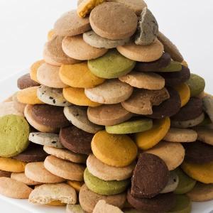 豆乳おからクッキー 蒟蒻マンナン入り 訳あり 1kg 8種類のフレーバー(プレーン・胚芽・パンプキン・珈琲・ニンジン・セサミ・抹茶・ココア)|cakefactory