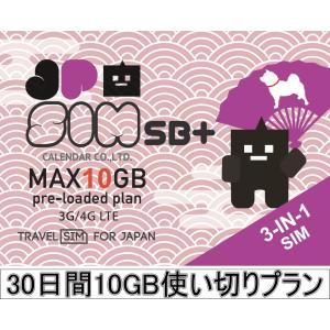 プリペイドSIMカード JPSIM SB+ 30日間10GB使い切りプラン(nano/micro/標準SIMマルチ対応) SIMピン付|calendar-world