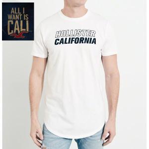 HOLLISTERホリスター正規品メンズ半袖TEEシャツGuys Print Logo Graphic Tee|californiastyle