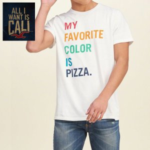 HOLLISTER ホリスター メンズ 半袖TEEシャツ Printed Logo Graphic Tee WHITE 323-243-1877-100|californiastyle