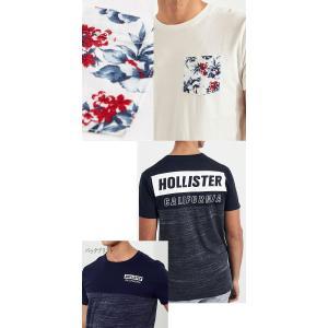 ホリスターメンズ Tシャツ 正規 HOLLISTER|californiastyle|03