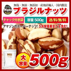 ポイント消化 送料無料ブラジルナッツ 500g アマゾンのスーパーナッツ 産地直輸入 海外では有名な...
