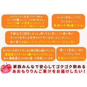 青森 りんごジュース 160万本突破 100% ストレート果汁 15本メガセット【林檎園 K-15】 年間16万本完売 葉とらずりんご 使用 リンゴジュース 1000g×15本[※SP]|cameashi|04
