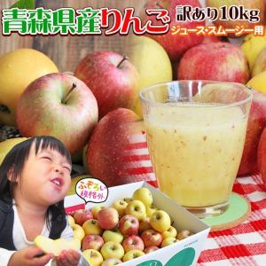 りんご 訳あり 10kg 送料無料 規格...