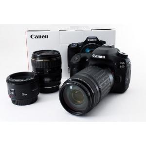 キヤノン Canon 80D 単焦点&標準&望遠トリプルレンズセット 美品 新品SDカード8GB、元...