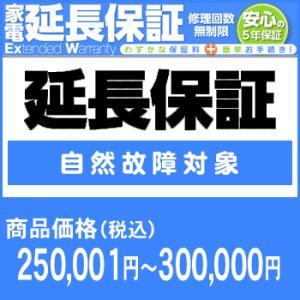 ワランティテクノロジー 5年間延長保証(自然故障対象)商品価格250,001円〜300,000円|camera-saito