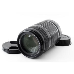 望遠レンズ 中古 Canon キヤノン EF-S 55-250mm IS II 手振れ補正 デジタル一眼レフ 交換レンズ