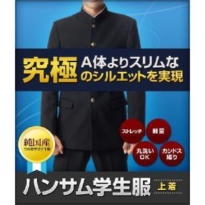 学生服 全国標準型学生服 スタイリッシュでスリムなハンサム学生服|campuskagayaki