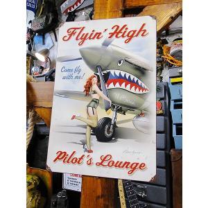 フライトジャケットの背中などに描かれるピンナップガールアートと昔の戦闘機が描かれたアメリカ製のヘヴィ...