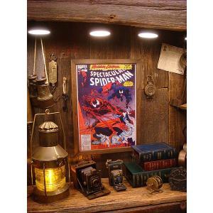 ポスターフレーム(スパイダーマンVSベノム) アメリカ雑貨 アメリカン雑貨 おしゃれ インテリア雑貨 ポスター 人気 壁掛け キャラクター|candytower