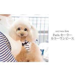 犬 服 ワンピース 夏 春 新作 ボーダー 犬の服 セーラー きゃんナナ ドッグウェア ブランド|cannanaonline|04