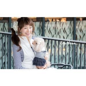 犬 服 ワンピース 夏 春 新作 ボーダー 犬の服 セーラー きゃんナナ ドッグウェア ブランド|cannanaonline|06