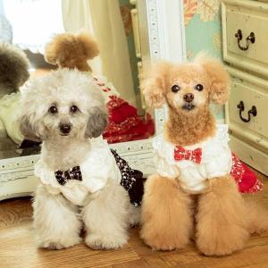 犬 服 ワンピース リボン 秋冬 ツイード 犬の服 きゃんナナ ドッグウェア ブランド|cannanaonline|02