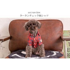 犬 服 チェック シャツ レッド グリーン 秋 冬 新作 犬の服 ドッグウェア きゃんナナ cannanaonline 02