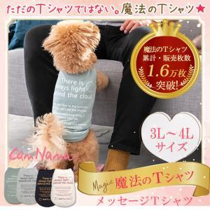 犬 服 Tシャツ 適温 アウトラスト 通年 温度調整 犬の服 3L 4L きゃんナナ ドッグウェア ブランド|cannanaonline
