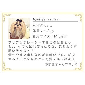 犬 服 ワンピース チェック リボン レース 春 夏  きゃんナナ ドッグウェア ブランド|cannanaonline|07