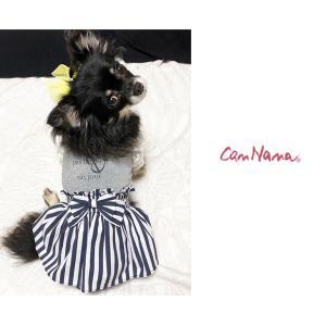 犬 服 ワンピース 春夏 犬の服  きゃんナナ ドッグウェア ブランド クール コーデワンピース|cannanaonline|02
