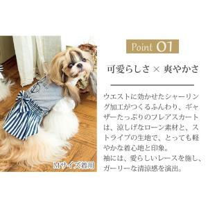 犬 服 ワンピース 春夏 犬の服  きゃんナナ ドッグウェア ブランド クール コーデワンピース|cannanaonline|03