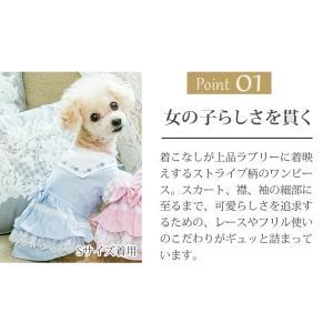 犬 服 ワンピース 夏春 ストライプ 犬の服  きゃんナナ ドッグウェア ブランド|cannanaonline|03