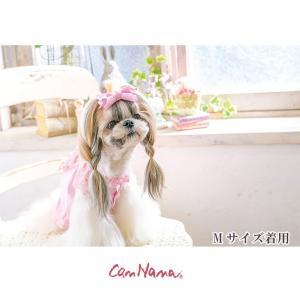 犬 服 フリル 春 夏 レース ブラウス 犬の服  きゃんナナ ドッグウェア ブランド|cannanaonline|02