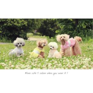 犬 服 ワンピース ピンク イエロー パープル オレンジ 春 夏 クール きゃんナナ ドッグウェア ブランド|cannanaonline|11