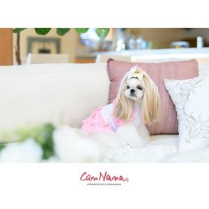 犬 服 ワンピース ピンク イエロー パープル オレンジ 春 夏 クール きゃんナナ ドッグウェア ブランド|cannanaonline|12