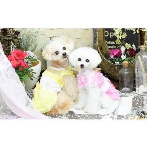 犬 服 ワンピース ピンク イエロー パープル オレンジ 春 夏 クール きゃんナナ ドッグウェア ブランド|cannanaonline|08