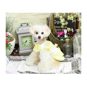 犬 服 ワンピース ピンク イエロー パープル オレンジ 春 夏 クール きゃんナナ ドッグウェア ブランド|cannanaonline|09