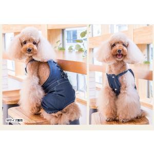 犬 服 サロペット 夏 春 デニム 犬の服 きゃんナナ ドッグウェア ブランド|cannanaonline|05