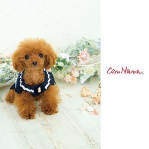 犬 服 春 夏 ワンピース 犬の服 冷感 きゃんナナ ドッグウェア ブランド|cannanaonline|08