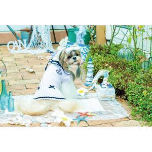 犬 服 春 夏 ワンピース 犬の服 冷感 きゃんナナ ドッグウェア ブランド|cannanaonline|09
