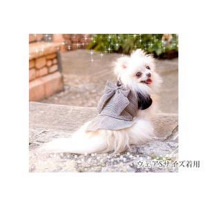犬 服 ワンピース  チェック 秋 冬 犬の服 きゃんナナ ドッグウェア ブランド|cannanaonline|03