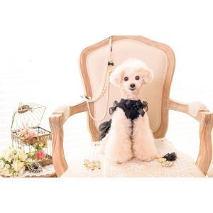 犬 服 ワンピース 秋 冬 犬の服 きゃんナナ ドッグウェア ブランド|cannanaonline|15