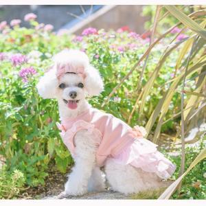 犬 服 ワンピース 秋 冬 犬の服 きゃんナナ ドッグウェア ブランド|cannanaonline|03