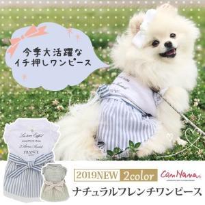 犬 服 春 夏 ワンピース リボン 犬の服 新作 きゃんナナ ドッグウェア ブランド|cannanaonline