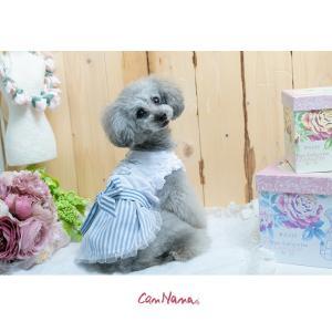 犬 服 春 夏 ワンピース リボン 犬の服 新作 きゃんナナ ドッグウェア ブランド|cannanaonline|10