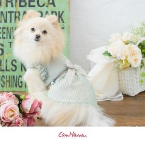 犬 服 春 夏 ワンピース リボン 犬の服 新作 きゃんナナ ドッグウェア ブランド|cannanaonline|13
