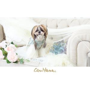 犬 服 春 夏 ワンピース リボン 犬の服 新作 きゃんナナ ドッグウェア ブランド|cannanaonline|05