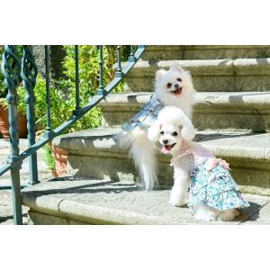 犬 服 春 夏 ワンピース 花柄 フリル 犬の服 きゃんナナ ドッグウェア ブランド|cannanaonline|11