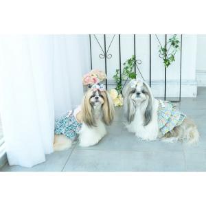 犬 服 春 夏 ワンピース 花柄 フリル 犬の服 きゃんナナ ドッグウェア ブランド|cannanaonline|14