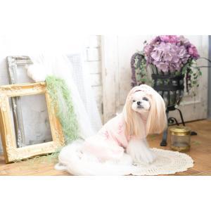 犬 服 春 夏 ワンピース ドット ガーリー 犬の服 きゃんナナ ドッグウェア ブランド|cannanaonline|06