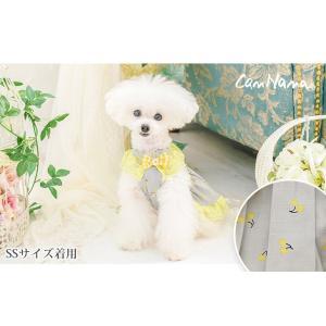 犬 服 ワンピース 春 夏 さくらんぼ 柄 レース 犬の服 きゃんナナ ドッグウェア ブランド|cannanaonline|02
