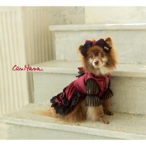 犬 ドレス 撮影 パーティ ゴシック お出かけ きゃんナナ ドッグウェア ブランド|cannanaonline|16