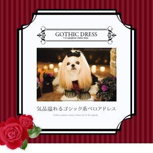 犬 ドレス 撮影 パーティ ゴシック お出かけ きゃんナナ ドッグウェア ブランド|cannanaonline|02