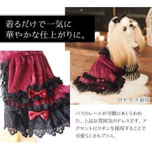 犬 ドレス 撮影 パーティ ゴシック お出かけ きゃんナナ ドッグウェア ブランド|cannanaonline|03