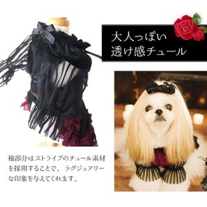 犬 ドレス 撮影 パーティ ゴシック お出かけ きゃんナナ ドッグウェア ブランド|cannanaonline|04