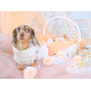 犬 服 カジュアル 秋 冬 ニット 犬の服 新作 きゃんナナ ドッグウェア ブランド cannanaonline 10