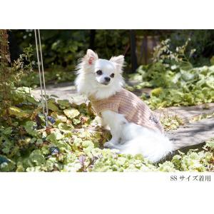 犬 服 カジュアル 秋 冬 ニット 犬の服 新作 きゃんナナ ドッグウェア ブランド cannanaonline 02