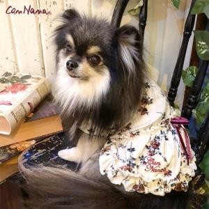犬 服 ワンピース 秋 冬 花柄 犬の服 新作 きゃんナナ ドッグウェア ブランド|cannanaonline|02